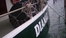 Diamax